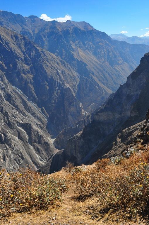 Самый глубокий каньон в мире, где обитают гигантские птицы долина, каньон, перу, птицы