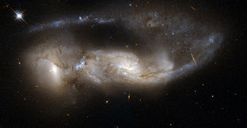 Humans came from distant galaxies along with everything