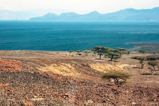 Кения обратилась к ветру