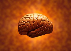 132 способа улучшить работу мозга