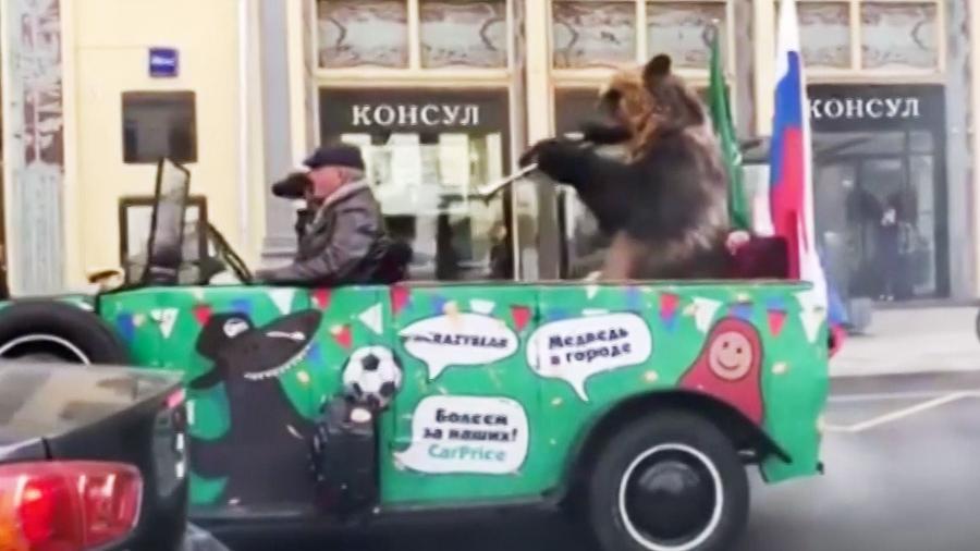 Медведь с вувузелой отпраздновал победу российской сборной в центре Москвы