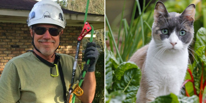 Пенсионер из Луизианы уже несколько лет бесплатно снимает кошек с деревьев