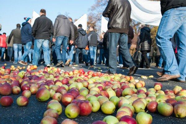 «Когда был открыт российский рынок, я мог с трех гектаров картофеля купить новый трактор» - в Польше проходят акции протеста