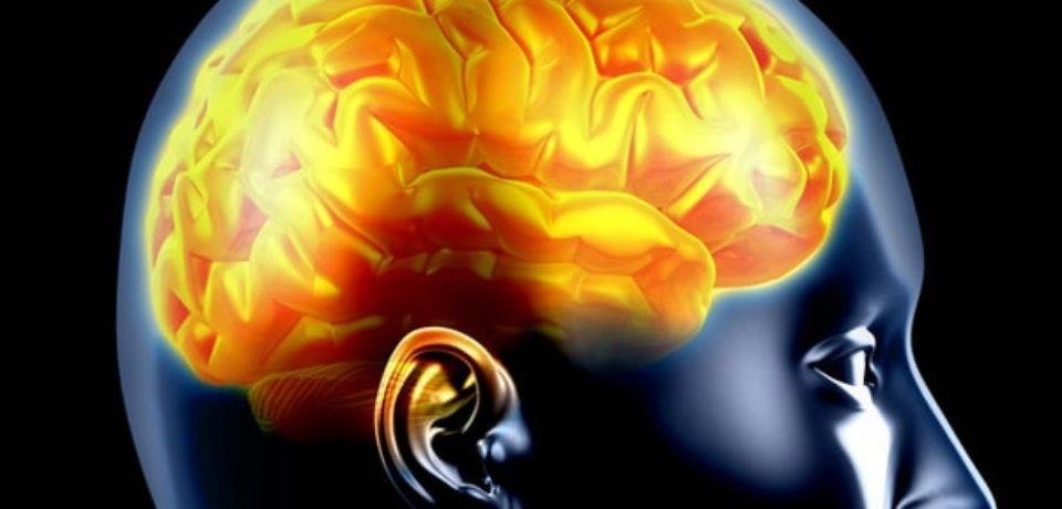 Как работает человеческий мозг: прогнозирование реальности, а не восприятие действительности