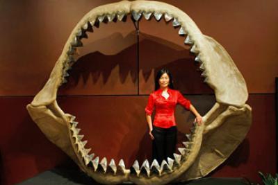 Ужасный монстр сожрал... кита