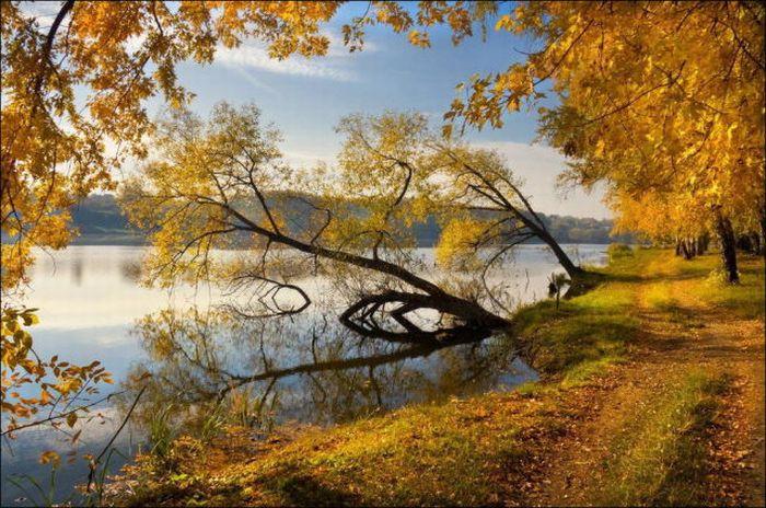beautiful_fall_in_photos_41 (700x464, 96Kb)