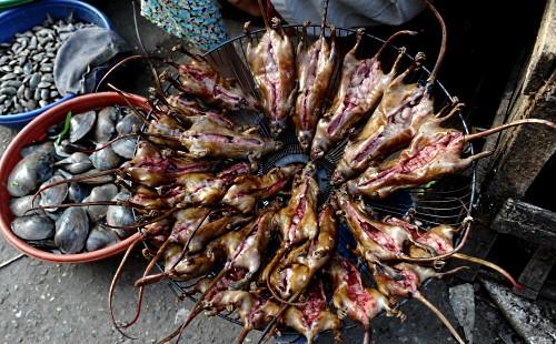 Азиатская кухня: во Вьетнаме начался сезон охоты на крыс