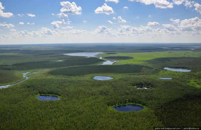 Васюган — река на юге Западно-Сибирской равнины, левый приток Оби.