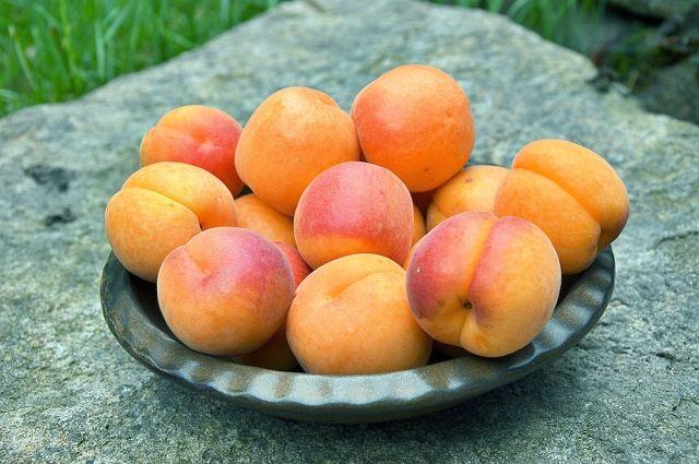 Сезон абрикосов. Готовим ароматный пирог, варенье, джем и запасы на зиму