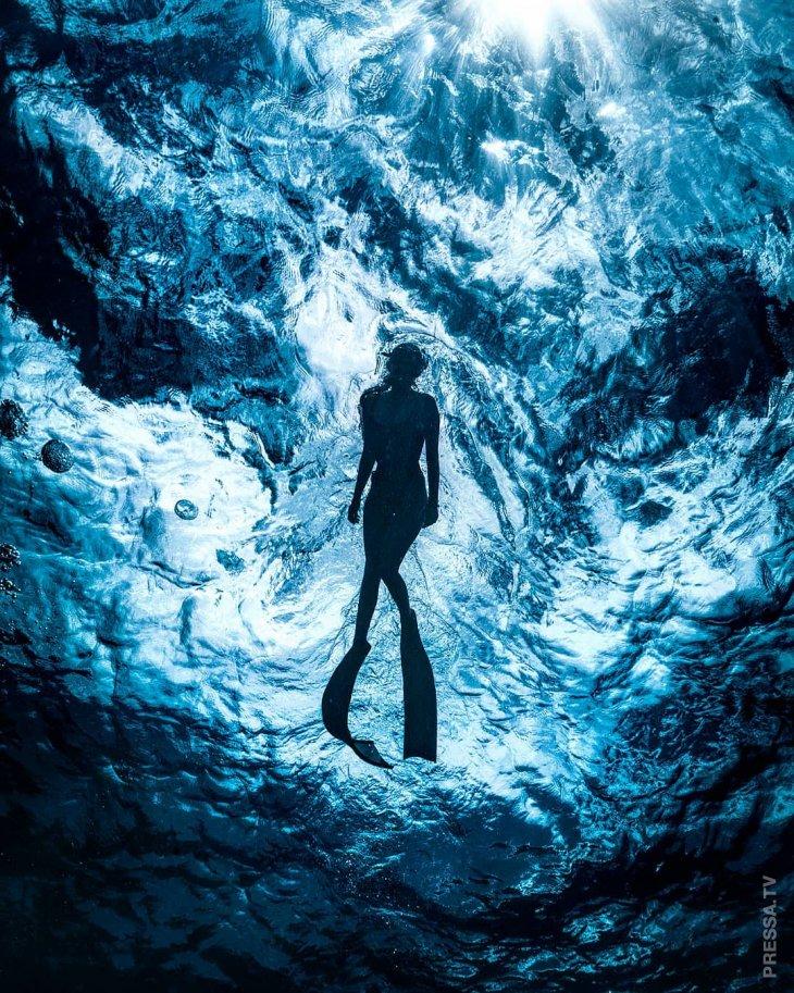 Удивительные подводные фотографии Джона Ковица