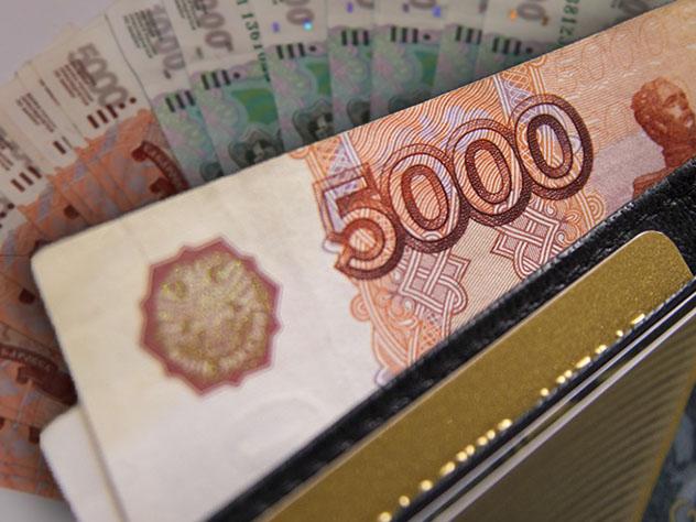 Стал известен заработок самого богатого депутата Заксобрания Пермского края