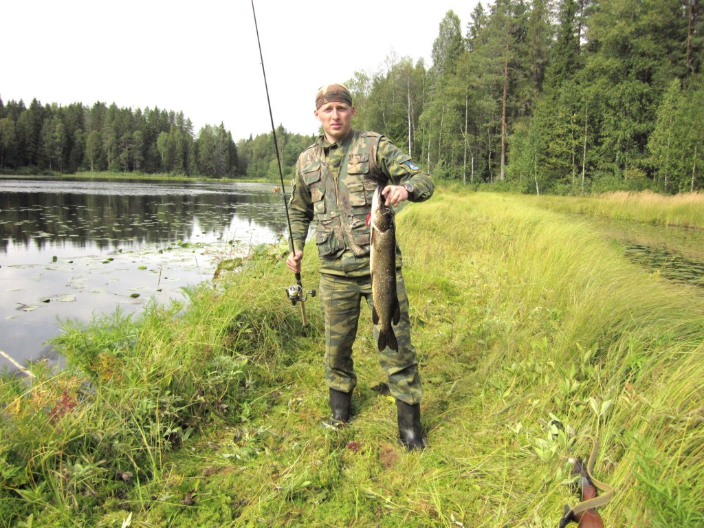 пашозеро тихвинский район рыбалка