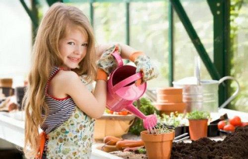 8 простых правил, как правильно ухаживать за комнатными растениями
