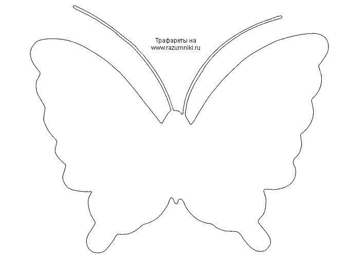 Сделать трафарет бабочки