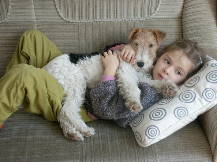 Животные, которые нас лечат