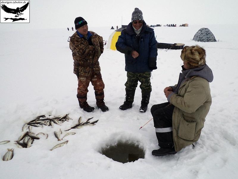 видео ловля корюшки сахалин