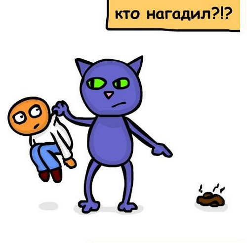О чем мечтает кот?