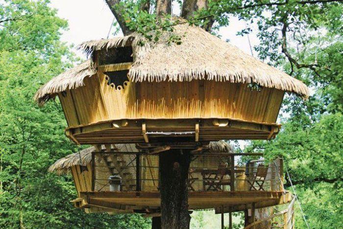 Интересные идеи по размещению домов на деревьях