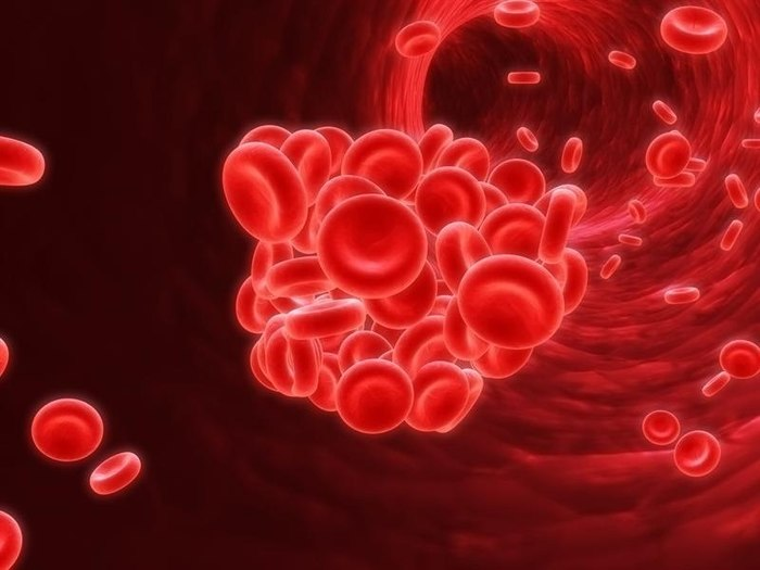 ЗДРАВОТДЕЛ.  Профилактика тромбоза