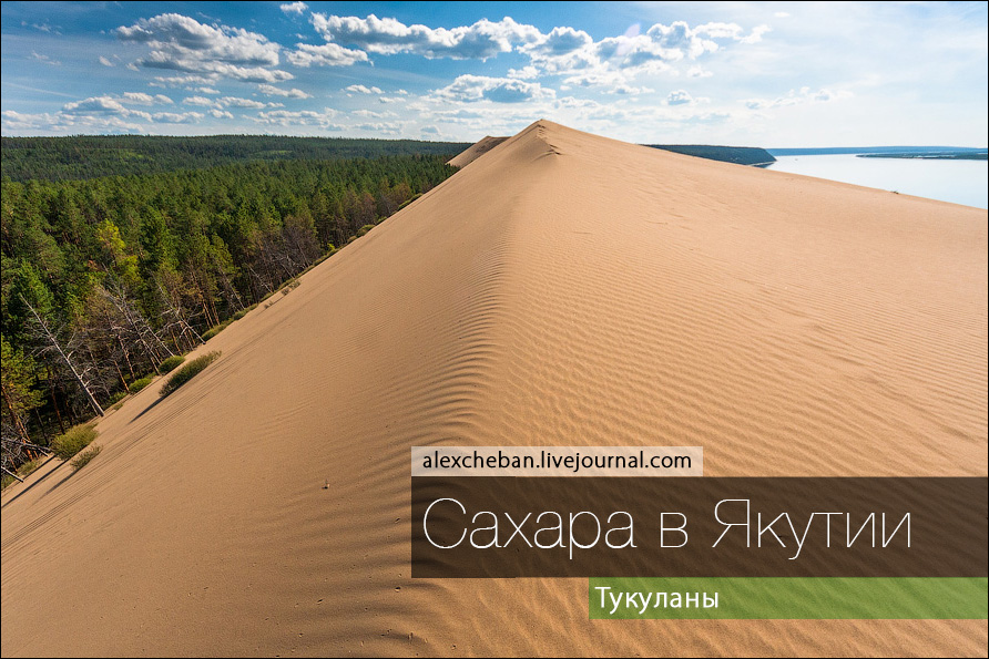 Песчаные барханы посреди сур…