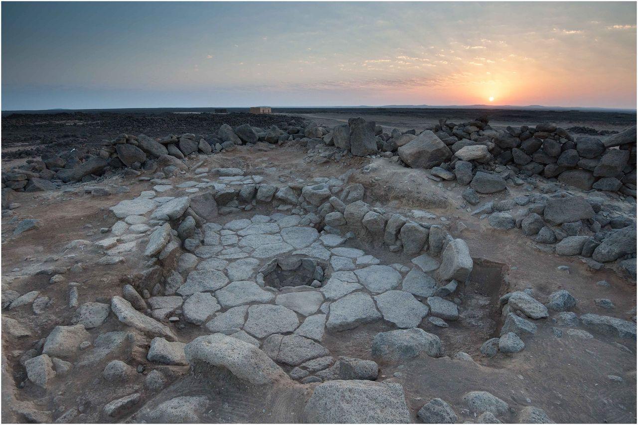 Археологи нашли крошки древн…