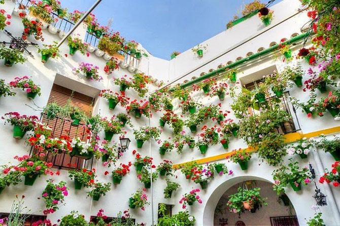 Самый цветочный двор в Кордове