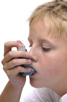 анализ на аллергию на попугаев