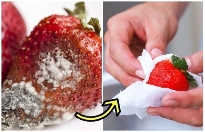 Как сохранить клубнику и ягоды свежими в три раза дольше