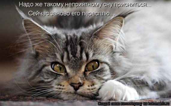 1359321594_96696255_large_1330447820__031 (570x355, 52Kb)
