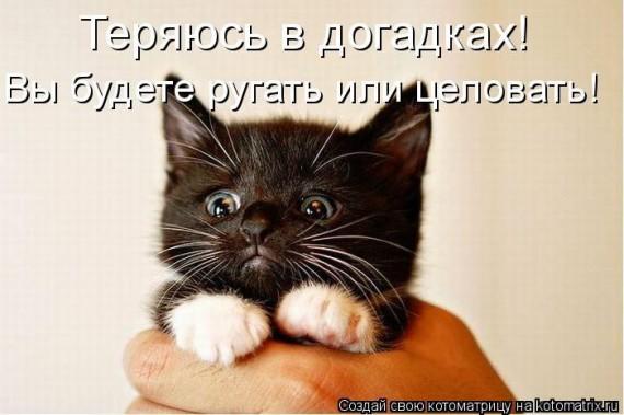 1359321481_96696241_large_2 (570x379, 53Kb)