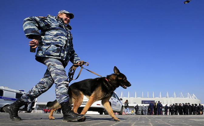 Чемпионат по футболу: Власти вводят полицейский режим