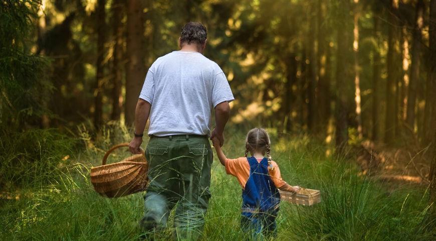 папа с дочкой в лесу