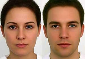 Немецкие ученые нашли идеальные черты лица