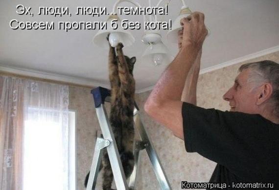 1359322111_1359093468_kotomatu (570x387, 50Kb)
