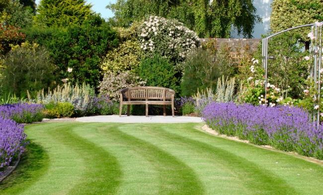 Идеальный газон своими руками: как и когда лучше всего сеять газонную траву?
