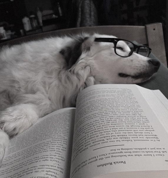 18 книг отличных книг, которые стоит прочитать