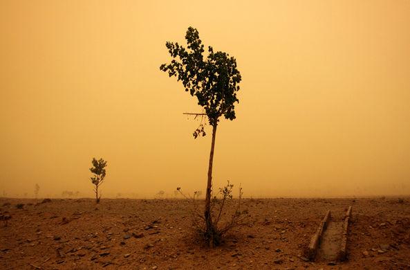 Климатологи спрогнозировали убийственную для человечества жару