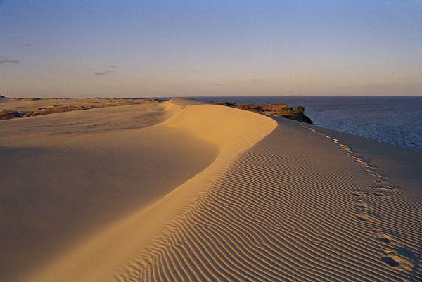 Неринга — край песчаных дюн и первозданной природы (фотопутешествие)