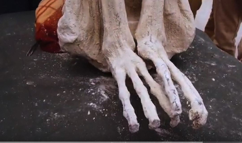 В Перу возле плато Наска нашли странную мумию. Останки пришельца?