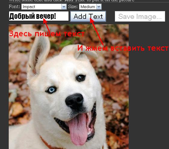 Сайт для быстрого подписания картинки или фото
