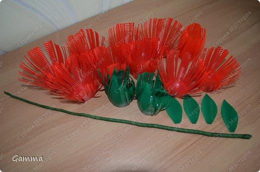Мастер-класс: Астры из стаканчиков Стаканы. Фото 7