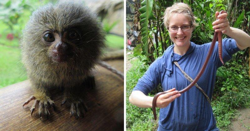 Пара провела 5 месяцев в джунглях Южной Америки и сделала удивительные открытия