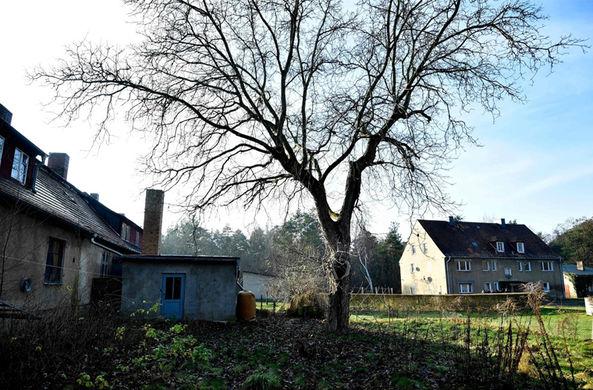 Деревню в Германии продали на аукционе