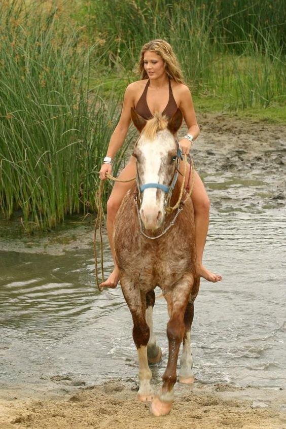 Видео сексдевушки с конём считаю