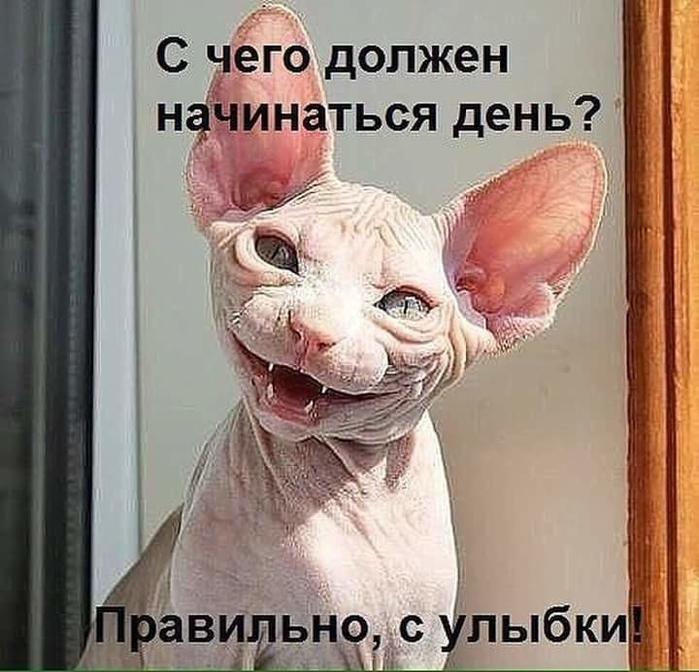 День начинается с улыбки!))
