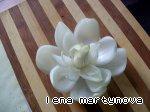Цветок из лука Вода