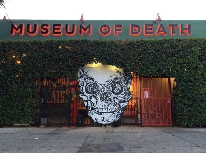 11 самых странных, но интересных музеев мира, которые стоит посетить