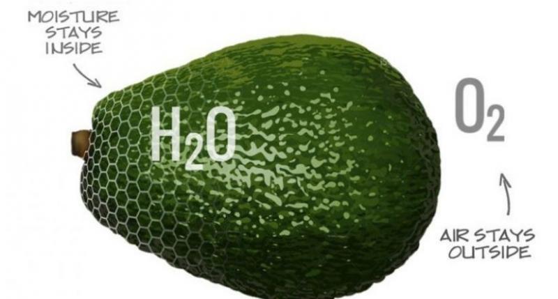 Разработано покрытие для пищевых продуктов, которое в разы увеличивает срок хранения
