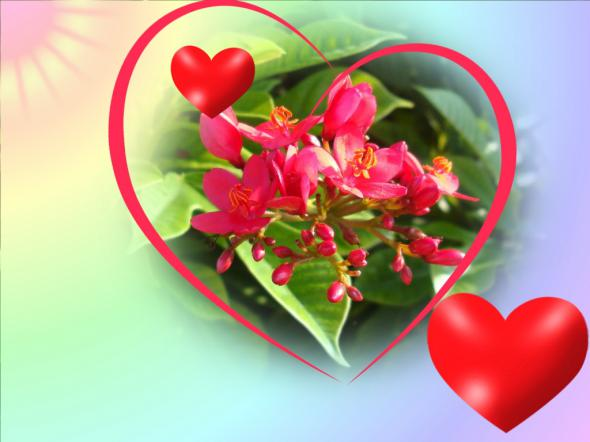 Я ЛЮБЛЮ… — послание от Наташи Тофт