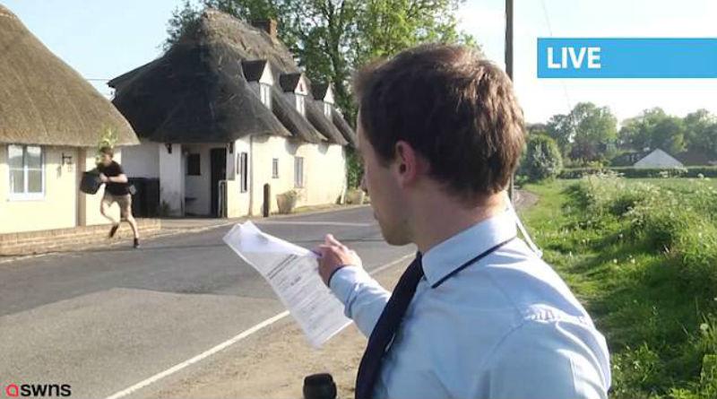 Репортер в прямом эфире рассказывал о плантации марихуаны, когда на заднем плане появился парень с кустом в руках